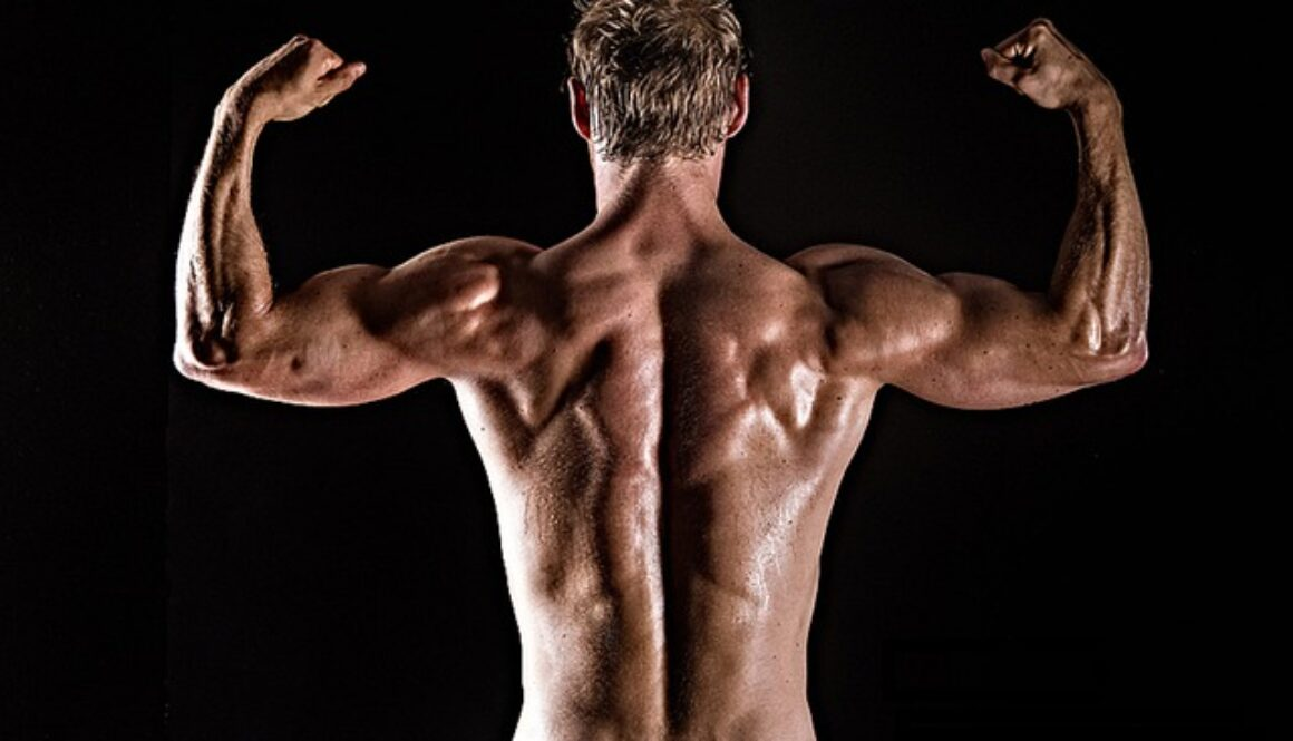 best exercises for a strong back